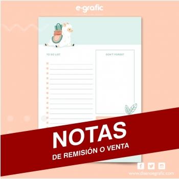 NOTAS DE REMISIÓN MEDIA CARTA